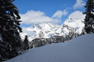 Toggenburg Winter 1