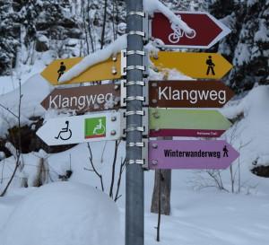 Toggenburg Winter 10
