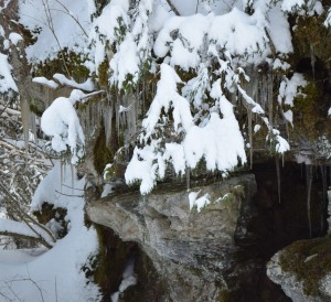 Toggenburg Winter 15
