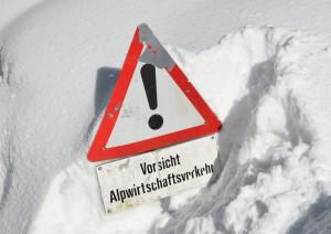 Toggenburg Winter 62