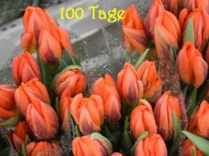 100 Tage Tuedelkram by Heigo